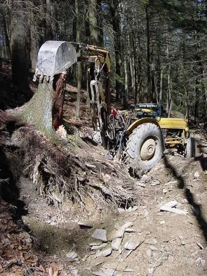 Click image for larger version  Name:Big stump.jpg Views:40 Size:140.2 KB ID:207312