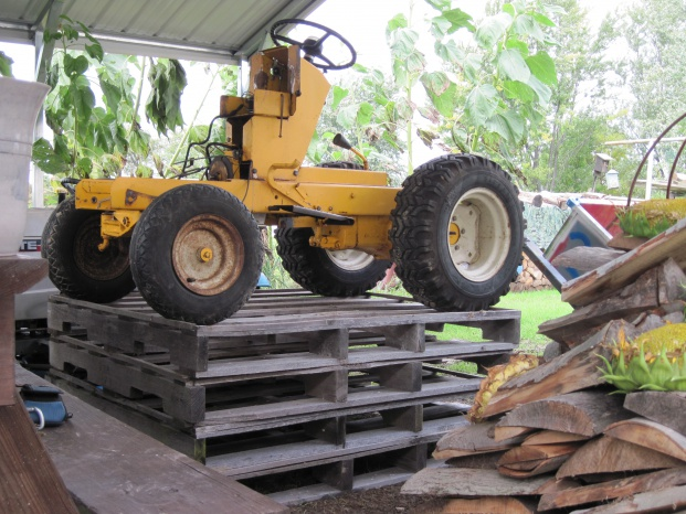 IH Cub Cadet 100 picts ,   - MyTractorForum com - The Friendliest