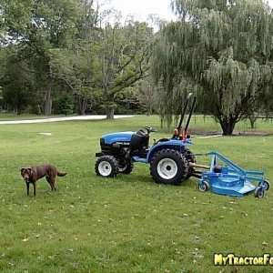 Dog and New Tractor